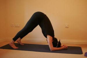 Step one: dolphin pose, like a downward dog on your elbows (image from yogamums.com)
